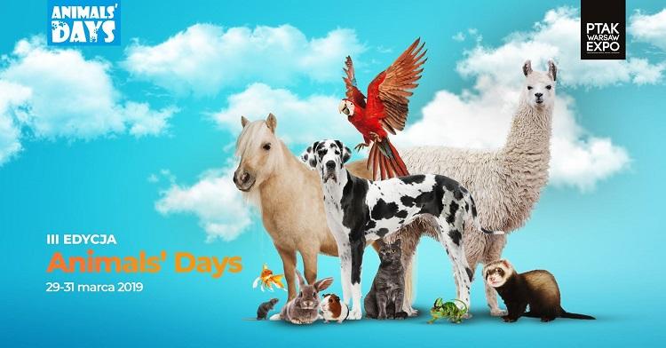 animals_days
