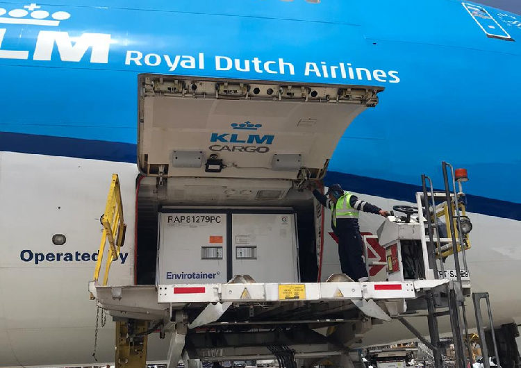 klm-cargo-vacuna-chile-750x530